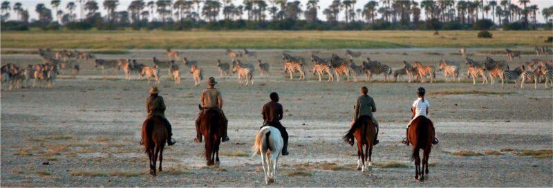 Makgadikgadi Game Reserve